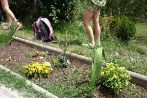 Blumen vor der Schule
