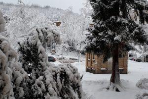 Birkenhof im Winter